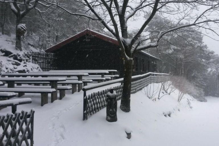 Pfälzerwald Verein Start